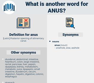 anus, synonym anus, another word for anus, words like anus, thesaurus anus