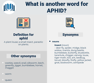 aphid, synonym aphid, another word for aphid, words like aphid, thesaurus aphid