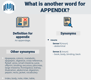appendix, synonym appendix, another word for appendix, words like appendix, thesaurus appendix