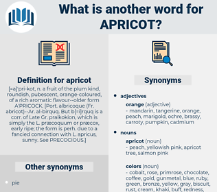 apricot, synonym apricot, another word for apricot, words like apricot, thesaurus apricot