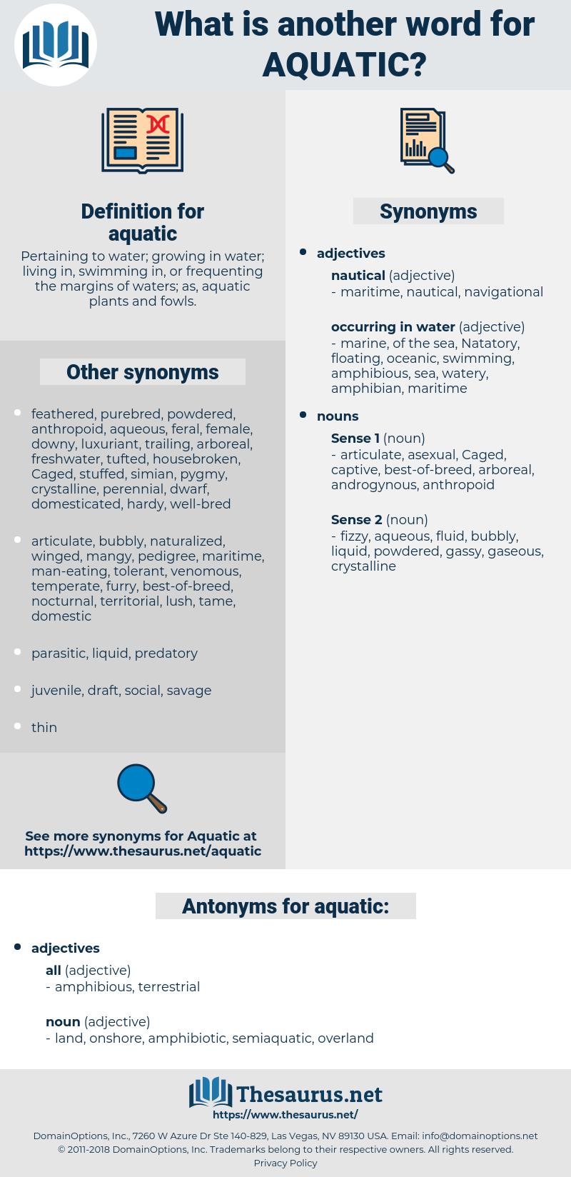 aquatic, synonym aquatic, another word for aquatic, words like aquatic, thesaurus aquatic