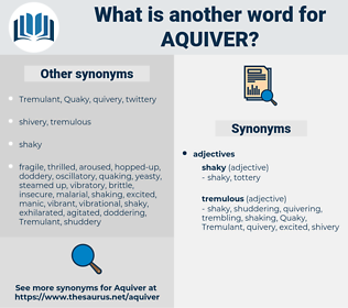aquiver, synonym aquiver, another word for aquiver, words like aquiver, thesaurus aquiver