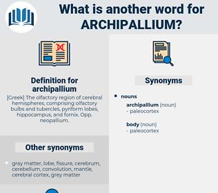 archipallium, synonym archipallium, another word for archipallium, words like archipallium, thesaurus archipallium