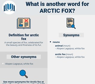 arctic fox, synonym arctic fox, another word for arctic fox, words like arctic fox, thesaurus arctic fox