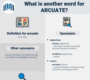 arcuate, synonym arcuate, another word for arcuate, words like arcuate, thesaurus arcuate