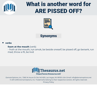 are pissed off, synonym are pissed off, another word for are pissed off, words like are pissed off, thesaurus are pissed off