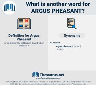 Argus Pheasant, synonym Argus Pheasant, another word for Argus Pheasant, words like Argus Pheasant, thesaurus Argus Pheasant
