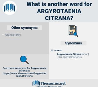 Argyrotaenia Citrana, synonym Argyrotaenia Citrana, another word for Argyrotaenia Citrana, words like Argyrotaenia Citrana, thesaurus Argyrotaenia Citrana