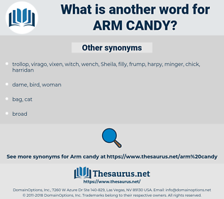 arm candy, synonym arm candy, another word for arm candy, words like arm candy, thesaurus arm candy
