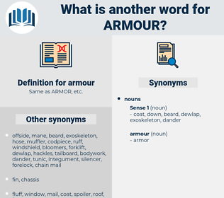 armour, synonym armour, another word for armour, words like armour, thesaurus armour