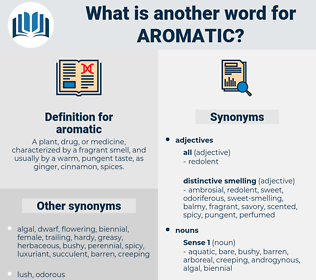 aromatic, synonym aromatic, another word for aromatic, words like aromatic, thesaurus aromatic
