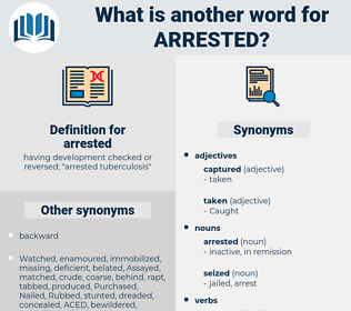 arrested, synonym arrested, another word for arrested, words like arrested, thesaurus arrested