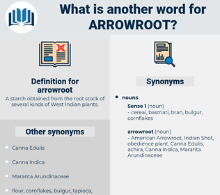 arrowroot, synonym arrowroot, another word for arrowroot, words like arrowroot, thesaurus arrowroot