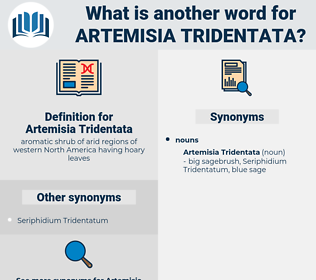 Artemisia Tridentata, synonym Artemisia Tridentata, another word for Artemisia Tridentata, words like Artemisia Tridentata, thesaurus Artemisia Tridentata