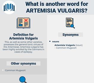 Artemisia Vulgaris, synonym Artemisia Vulgaris, another word for Artemisia Vulgaris, words like Artemisia Vulgaris, thesaurus Artemisia Vulgaris