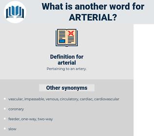 arterial, synonym arterial, another word for arterial, words like arterial, thesaurus arterial