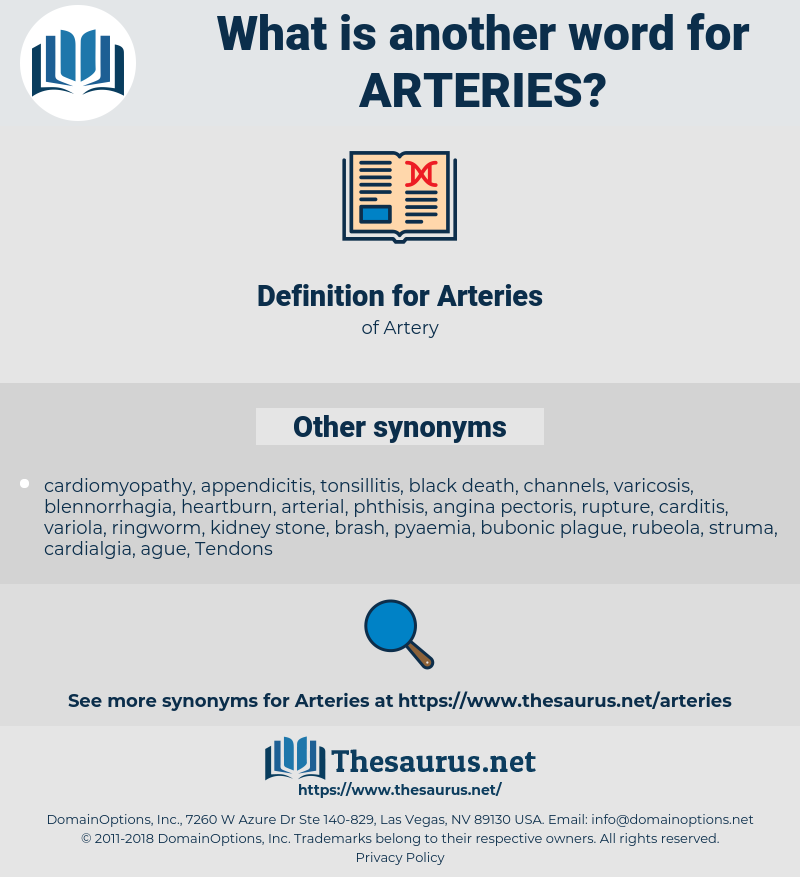 Arteries, synonym Arteries, another word for Arteries, words like Arteries, thesaurus Arteries
