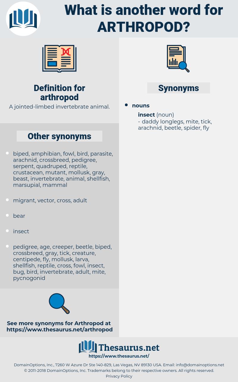 arthropod, synonym arthropod, another word for arthropod, words like arthropod, thesaurus arthropod