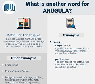 arugula, synonym arugula, another word for arugula, words like arugula, thesaurus arugula