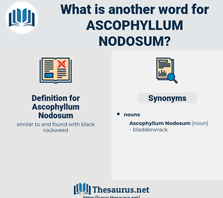 Ascophyllum Nodosum, synonym Ascophyllum Nodosum, another word for Ascophyllum Nodosum, words like Ascophyllum Nodosum, thesaurus Ascophyllum Nodosum