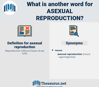 asexual reproduction, synonym asexual reproduction, another word for asexual reproduction, words like asexual reproduction, thesaurus asexual reproduction