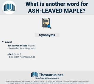 ash-leaved maple, synonym ash-leaved maple, another word for ash-leaved maple, words like ash-leaved maple, thesaurus ash-leaved maple