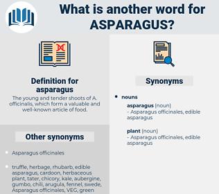 asparagus, synonym asparagus, another word for asparagus, words like asparagus, thesaurus asparagus