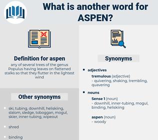 aspen, synonym aspen, another word for aspen, words like aspen, thesaurus aspen
