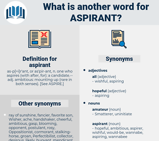 aspirant, synonym aspirant, another word for aspirant, words like aspirant, thesaurus aspirant