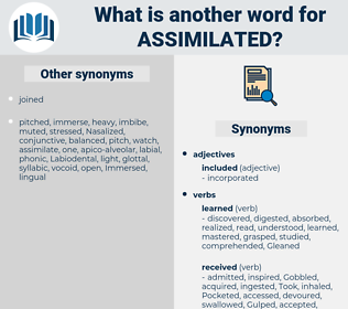 Assimilated, synonym Assimilated, another word for Assimilated, words like Assimilated, thesaurus Assimilated