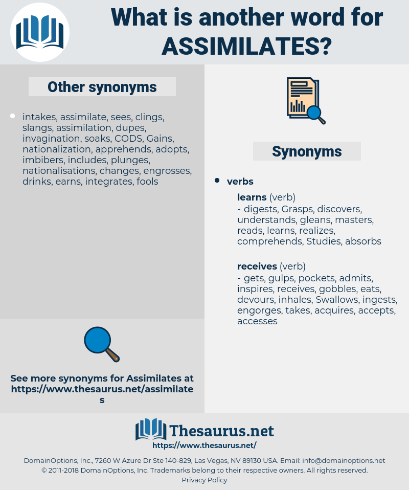assimilates, synonym assimilates, another word for assimilates, words like assimilates, thesaurus assimilates