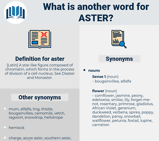 aster, synonym aster, another word for aster, words like aster, thesaurus aster