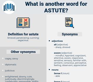 astute, synonym astute, another word for astute, words like astute, thesaurus astute