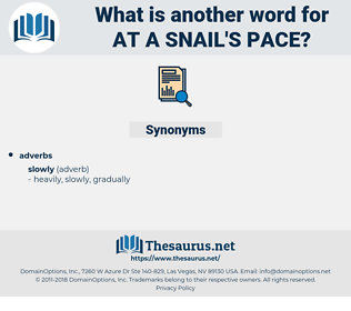 at a snail's pace, synonym at a snail's pace, another word for at a snail's pace, words like at a snail's pace, thesaurus at a snail's pace