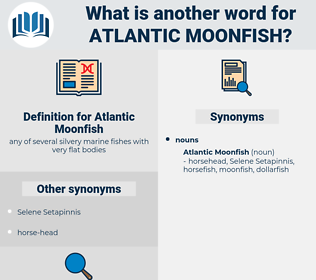 Atlantic Moonfish, synonym Atlantic Moonfish, another word for Atlantic Moonfish, words like Atlantic Moonfish, thesaurus Atlantic Moonfish