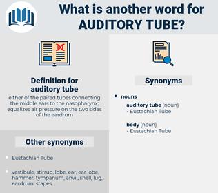 auditory tube, synonym auditory tube, another word for auditory tube, words like auditory tube, thesaurus auditory tube