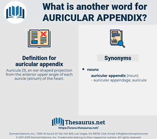 auricular appendix, synonym auricular appendix, another word for auricular appendix, words like auricular appendix, thesaurus auricular appendix