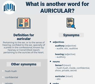 auricular, synonym auricular, another word for auricular, words like auricular, thesaurus auricular