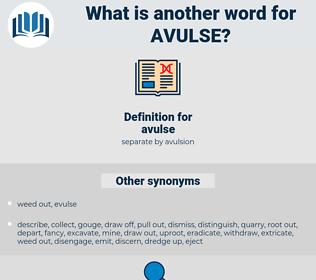 avulse, synonym avulse, another word for avulse, words like avulse, thesaurus avulse