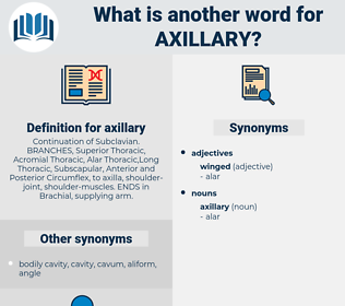 axillary, synonym axillary, another word for axillary, words like axillary, thesaurus axillary