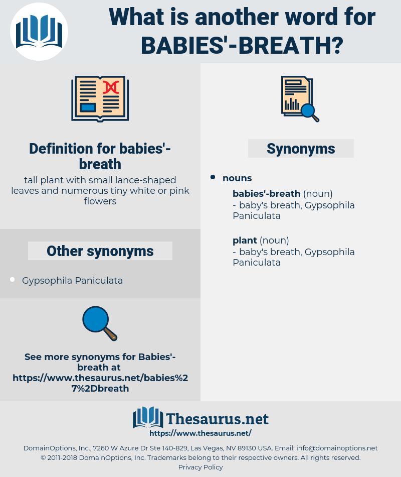 babies'-breath, synonym babies'-breath, another word for babies'-breath, words like babies'-breath, thesaurus babies'-breath