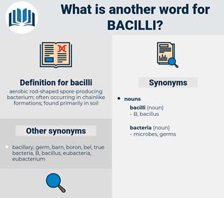 bacilli, synonym bacilli, another word for bacilli, words like bacilli, thesaurus bacilli