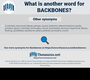 backbones, synonym backbones, another word for backbones, words like backbones, thesaurus backbones