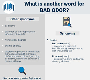 bad odor, synonym bad odor, another word for bad odor, words like bad odor, thesaurus bad odor