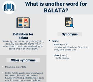 balata, synonym balata, another word for balata, words like balata, thesaurus balata