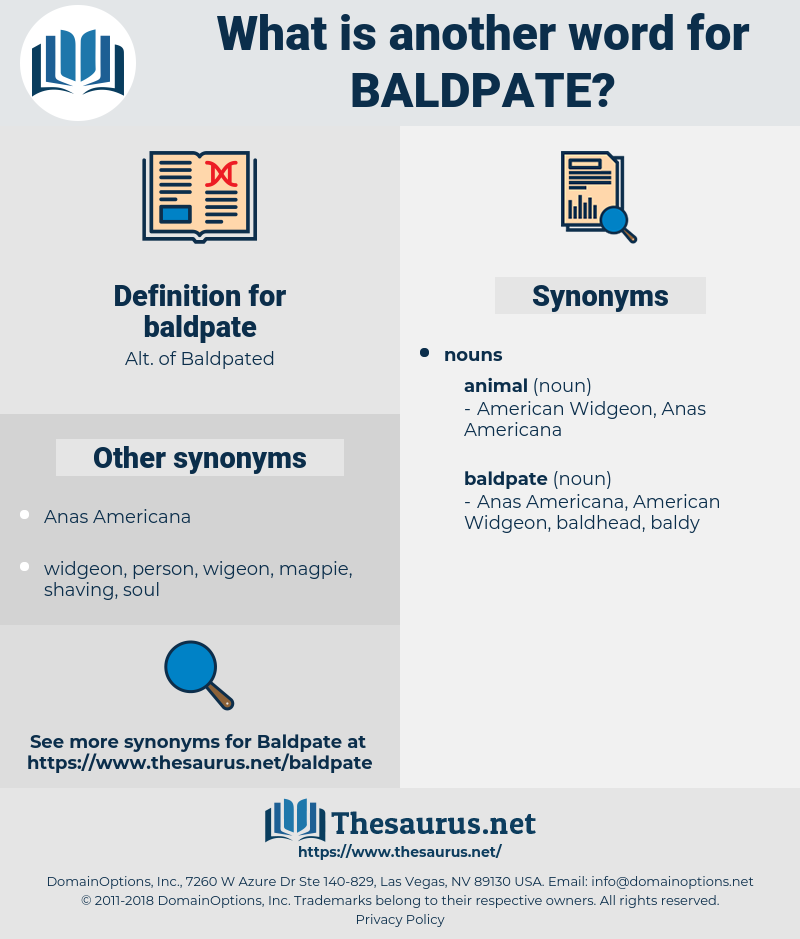 baldpate, synonym baldpate, another word for baldpate, words like baldpate, thesaurus baldpate