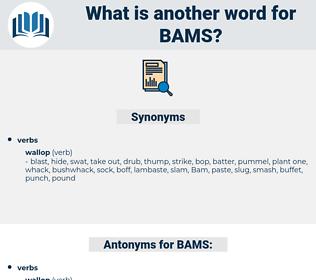 BAMS, synonym BAMS, another word for BAMS, words like BAMS, thesaurus BAMS