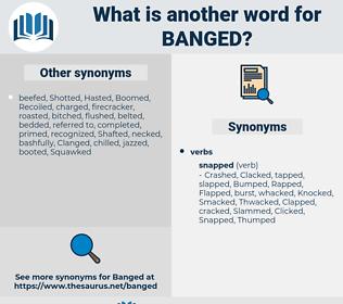 Banged, synonym Banged, another word for Banged, words like Banged, thesaurus Banged
