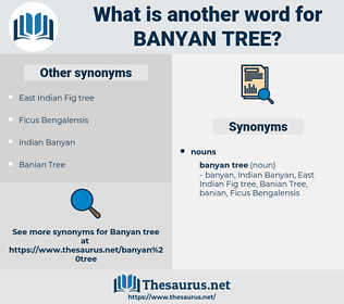 banyan tree, synonym banyan tree, another word for banyan tree, words like banyan tree, thesaurus banyan tree