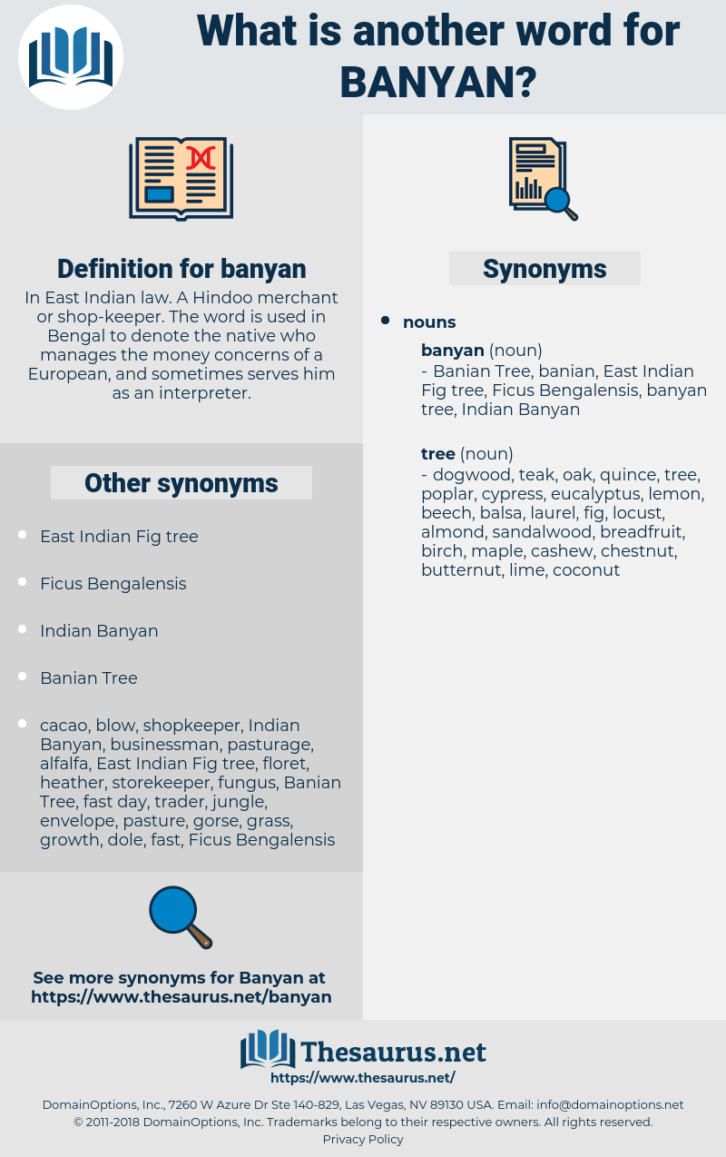 banyan, synonym banyan, another word for banyan, words like banyan, thesaurus banyan